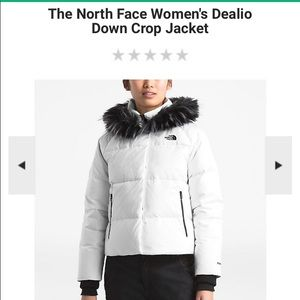 The North Face Dealio Down Jacket (Past Season)